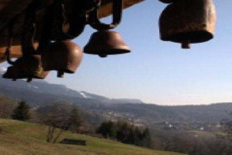 Location de vacances - Chalet à Les Carroz d'Arâches