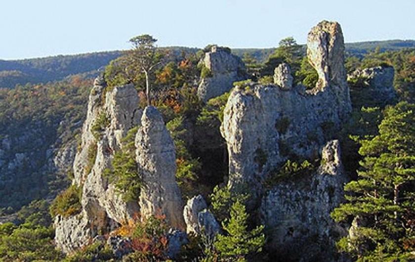 Location de vacances - Gîte à Millau - Montpellier-le-Vieux