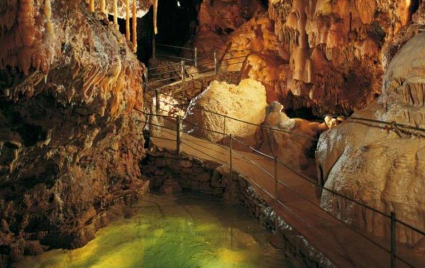 Location de vacances - Gîte à Millau - Grotte de Dargilan