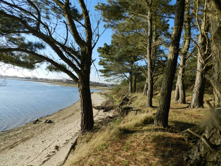 Location de vacances - Gîte à Plouhinec - Vue de la petite mer avec chemin de randonnée