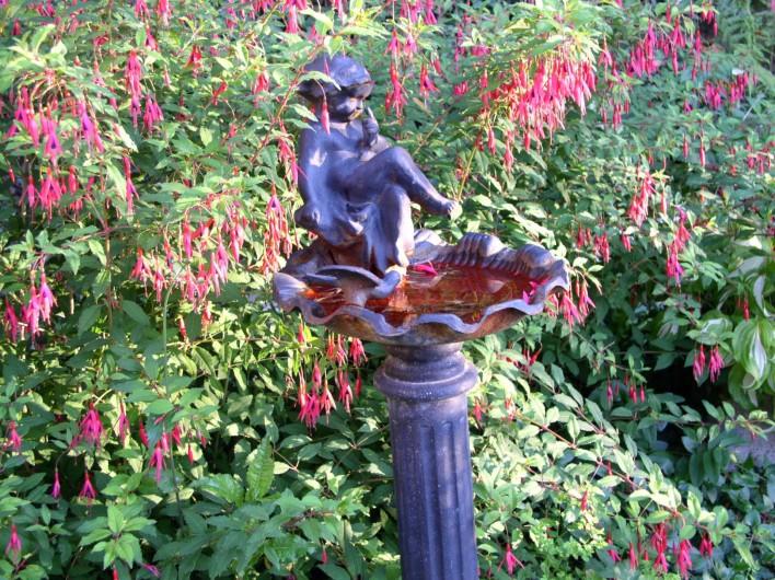 Location de vacances - Gîte à Sancey-le-Grand - le bain d'oiseaux