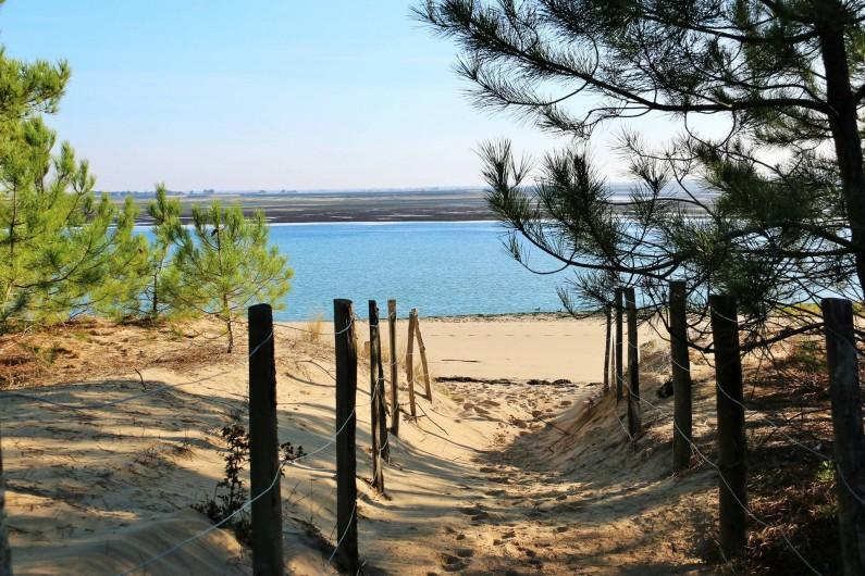 Location de vacances - Maison - Villa à Sainte-Marie-de-Ré - la plage....!!!!