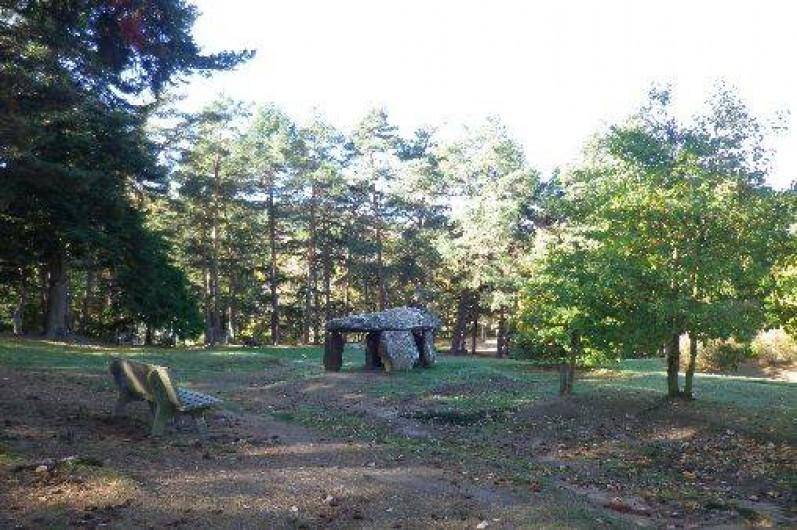 Location de vacances - Gîte à Saint-Nectaire - Le dolmen du parc