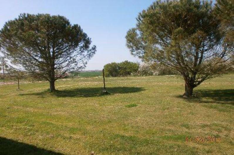 Location de vacances - Gîte à Saint-Vivien-de-Médoc - jardin des gites