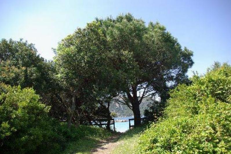 Location de vacances - Villa à Porto-Vecchio - arrivée devant la plage