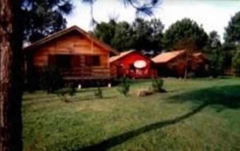 Location de vacances - Maison - Villa à Sanguinet