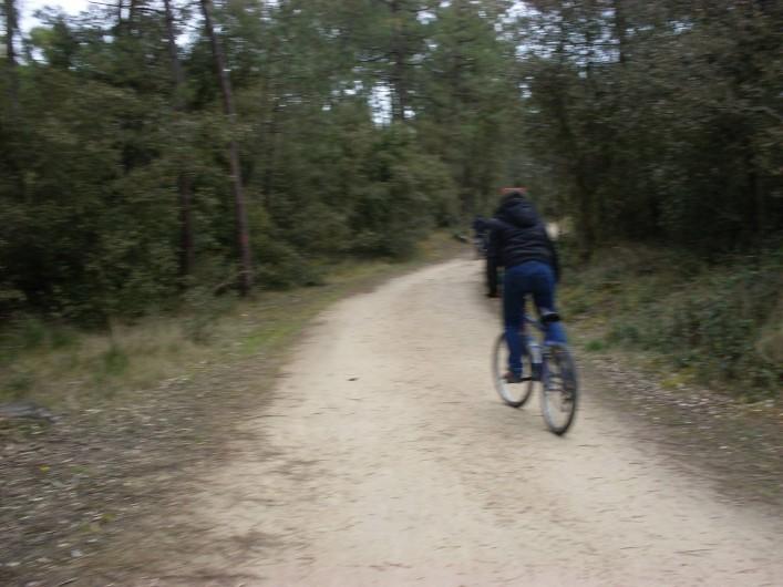 Location de vacances - Camping à Saint-Jean-de-Monts - forêt à proximité nombreuses pistes cyclables ,pédestres e équestres