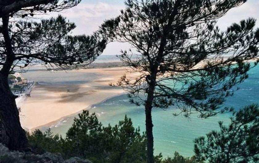 Location de vacances - Gîte à Narbonne - La Franquie