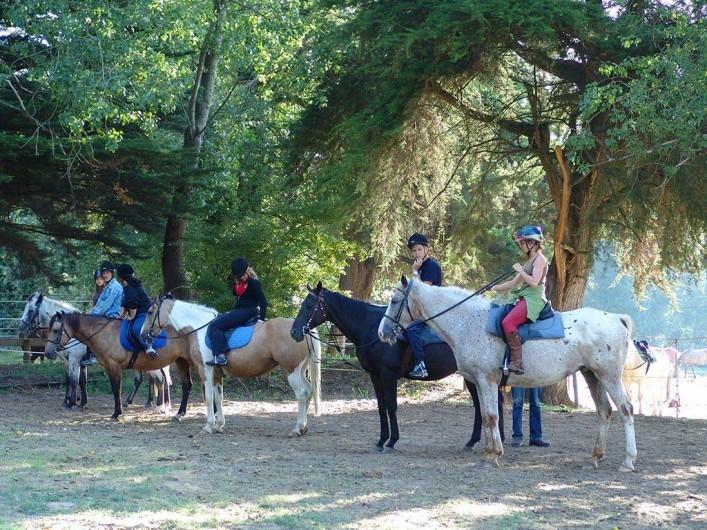 Location de vacances - Bungalow - Mobilhome à Saint-Hilaire-de-Riez - balade chevaux
