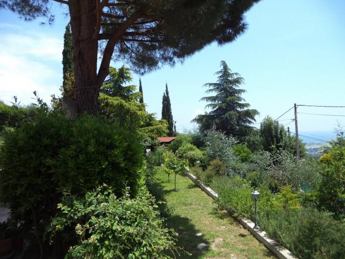 Location de vacances - Villa à Mandelieu-la-Napoule - vue du jardin