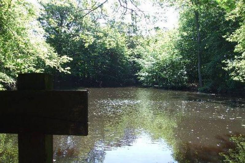 Location de vacances - Maison - Villa à Franchesse - L'étang