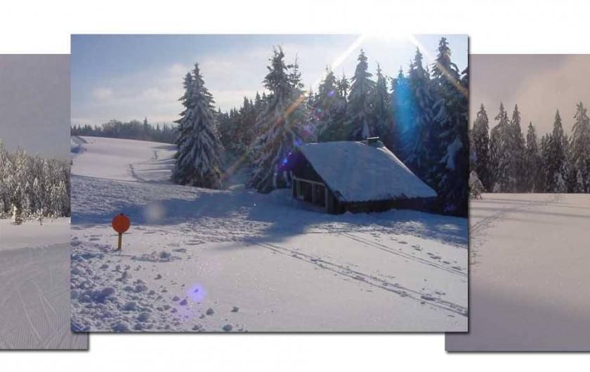Location de vacances - Gîte à La Bresse - LA BRESSE HIVER Pistes de ski de fond de Lispach