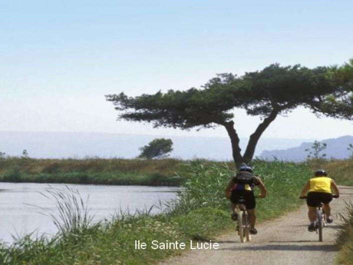 Location de vacances - Mas à Narbonne - Alentour