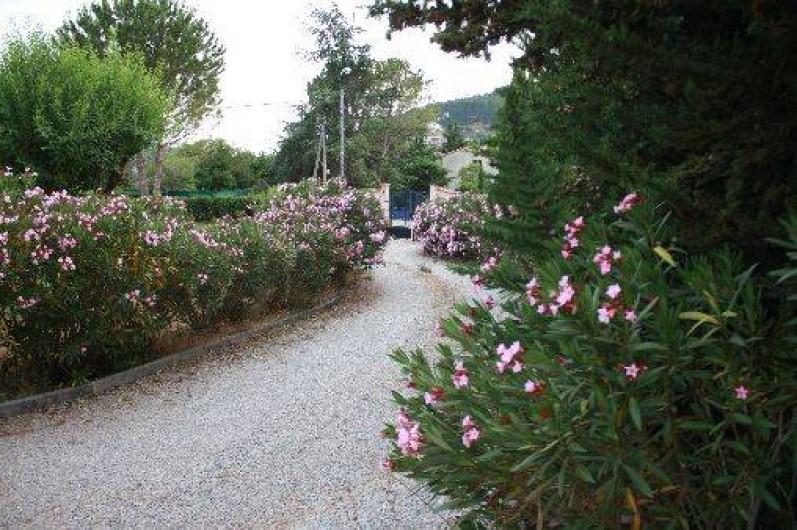 Location de vacances - Chambre d'hôtes à Carnoules
