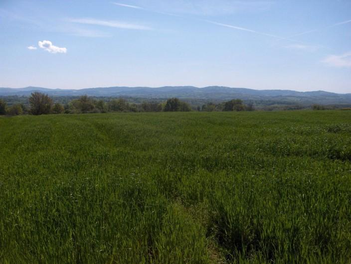 Location de vacances - Gîte à Saint-Bonnet-de-Cray - Vue sur prairies