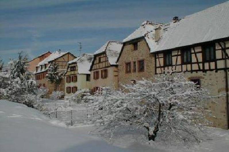 Location de vacances - Gîte à Bergheim - nos maisons sur les remparts