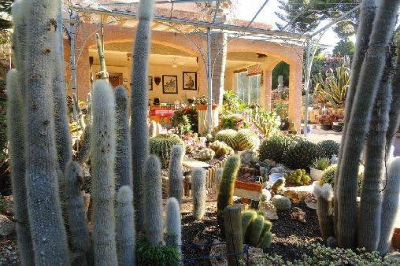 Maison Climatisee Dans Un Beau Jardin Exotique Avec Vue Sur Mer A