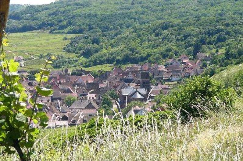 Location de vacances - Gîte à Gueberschwihr - Gueberschwihr, village typique d'Alsace au calme sur la route des vins