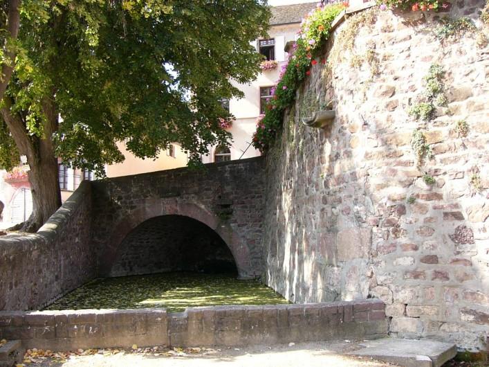 Location de vacances - Gîte à Gueberschwihr - Gueberschwihr,  son lavoir à chevaux