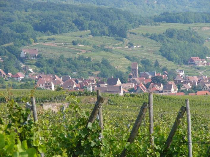 Location de vacances - Gîte à Gueberschwihr - Gueberschwihr sur la route des vins d'Alsace, village niché à flanc de coteaux