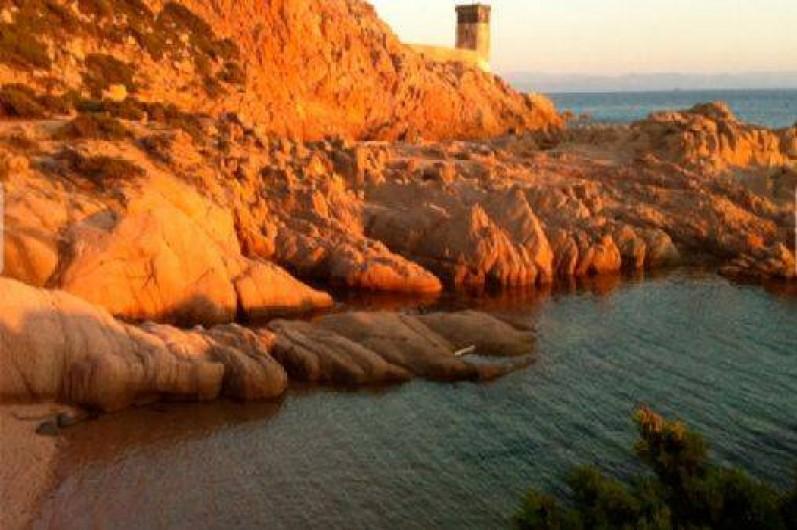 Location de vacances - Chalet à Bonifacio