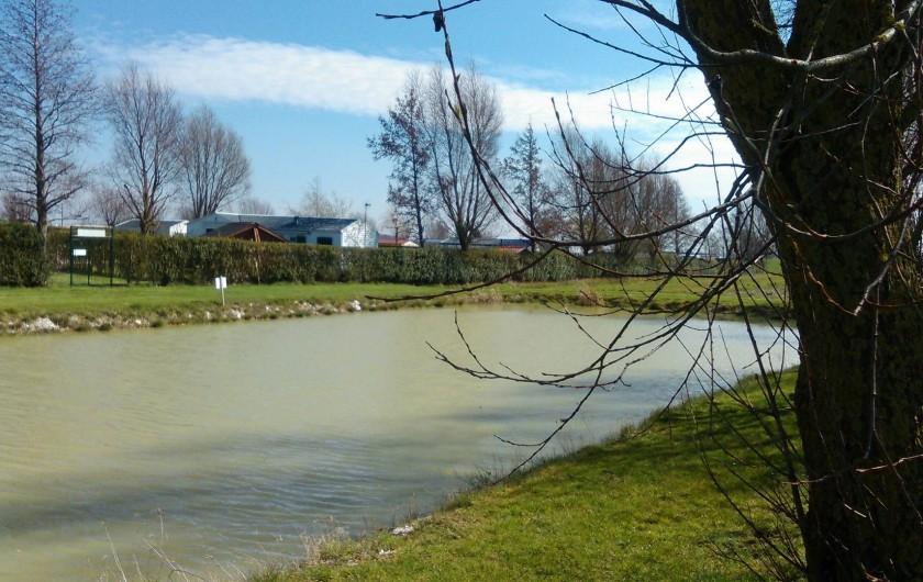 Location de vacances - Bungalow - Mobilhome à Zegerscappel - étang de pêche