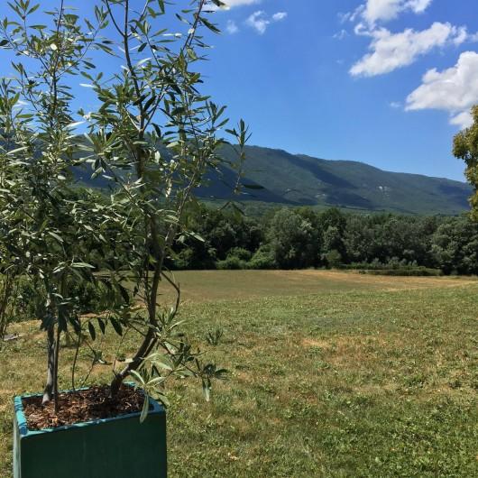 Location de vacances - Mas à Céreste - Jardin privatif et vue sur le Luberon