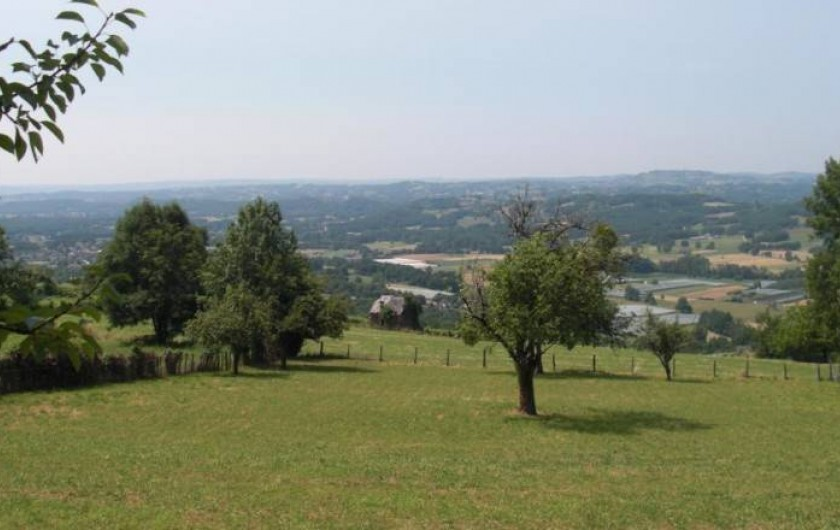 Location de vacances - Gîte à Allassac - jardin