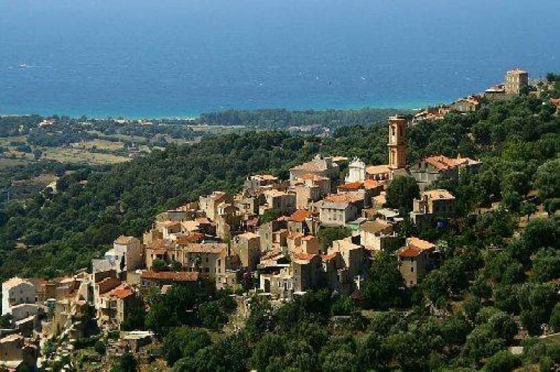Location de vacances - Villa à Aregno