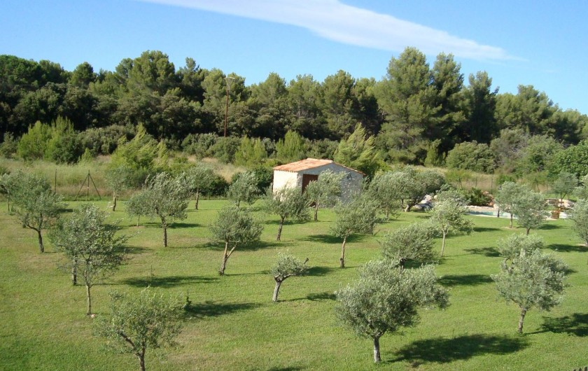 Location de vacances - Mas à Aix-en-Provence - oliveraie