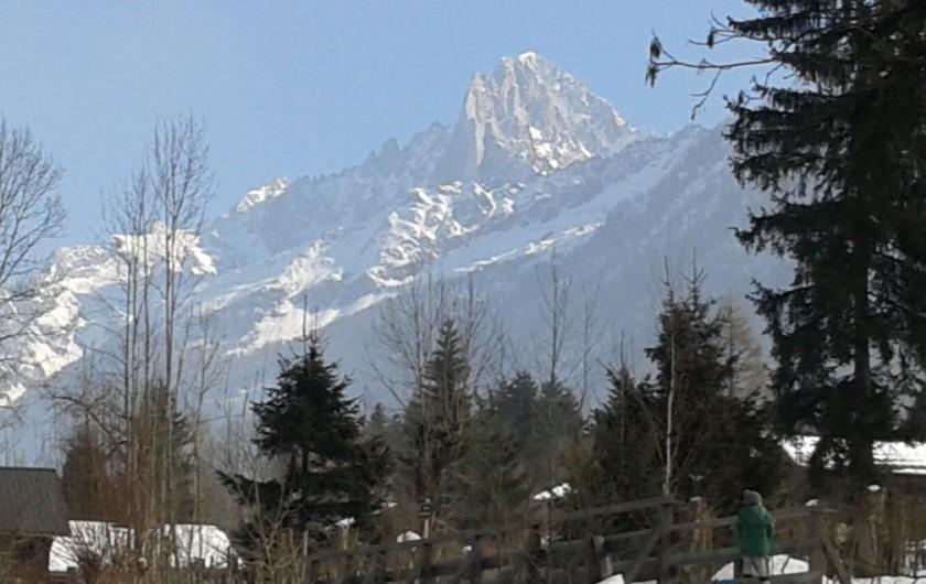 Location de vacances - Chalet à Les Houches - Vue de la terrasse : chaîne du Mont Blanc