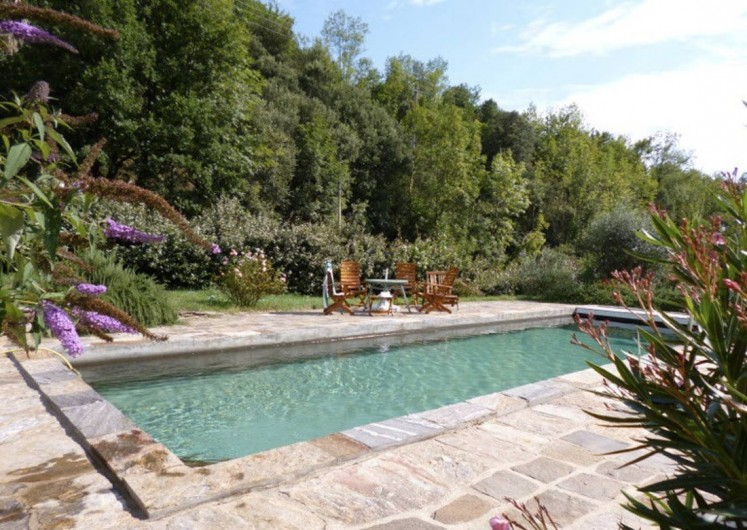 Location de vacances - Gîte à Saint-Vincent-d'Olargues - piscine au sel