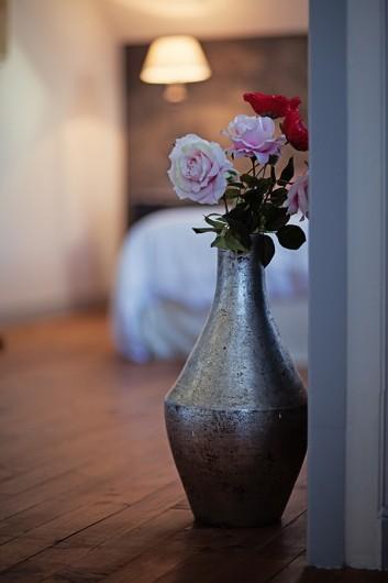 Location de vacances - Chambre d'hôtes à Salies-de-Béarn - la suite ambiance