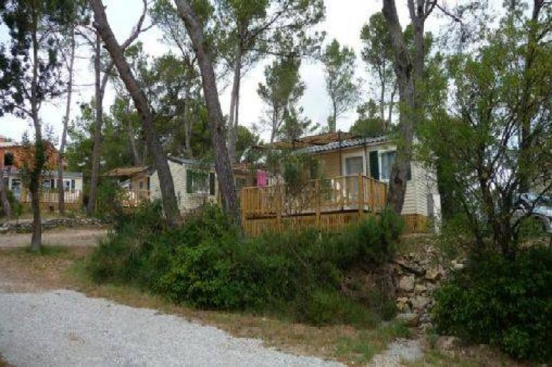 Location de vacances - Camping à Villemoustaussou - Mobil-homes sous les pins