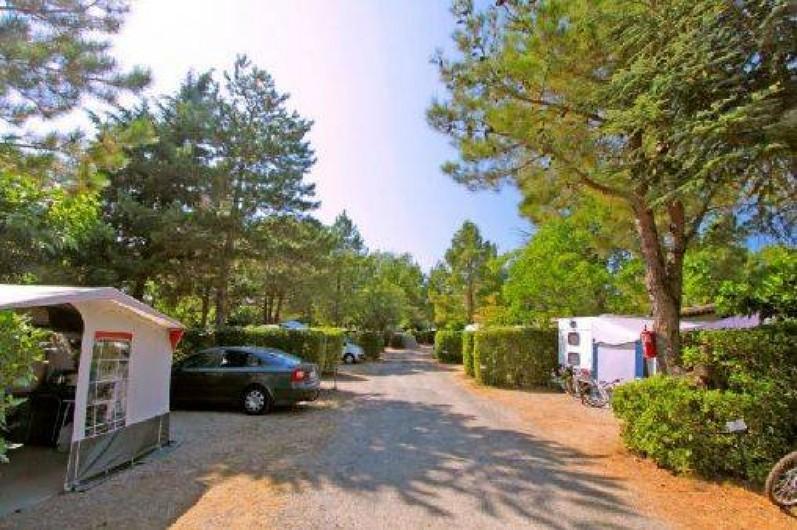 Location de vacances - Camping à Villemoustaussou - Une allée du camping