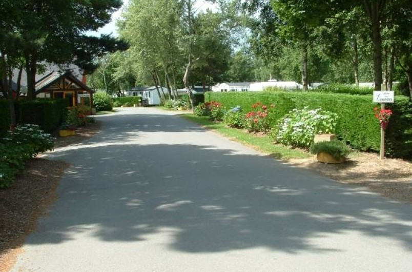 Location de vacances - Bungalow - Mobilhome à Guidel