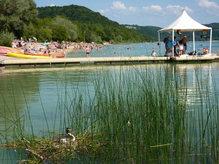 Location de vacances - Appartement à Marigny - Plage