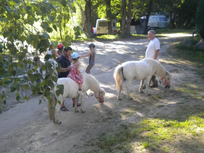 Location de vacances - Bungalow - Mobilhome à Villefranche-de-Rouergue - balade à poney gratuite pour les enfants