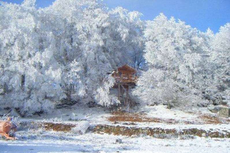 Location de vacances - Cabane dans les arbres à Paulhac-en-Margeride - L'hiver