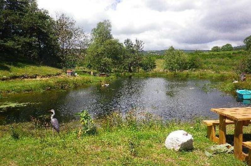 Location de vacances - Cabane dans les arbres à Paulhac-en-Margeride - Truites, grenouilles, tritons, et libellules cohabitent.