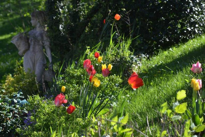 Location de vacances - Chambre d'hôtes à Beaune - Jardin printanier