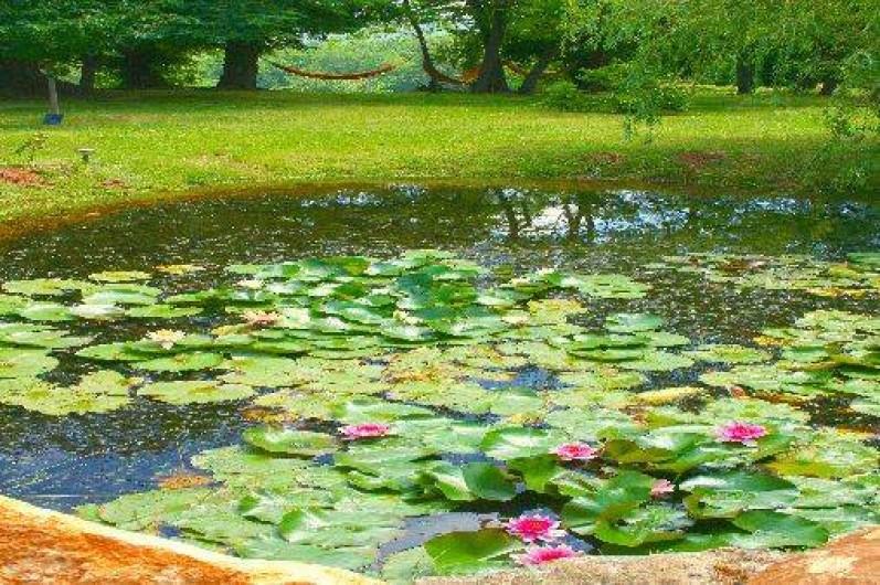 Location de vacances - Mas à Simeyrols - Petite marre peu profonde et Hamacs dans le jardin avec vue sur la vallée