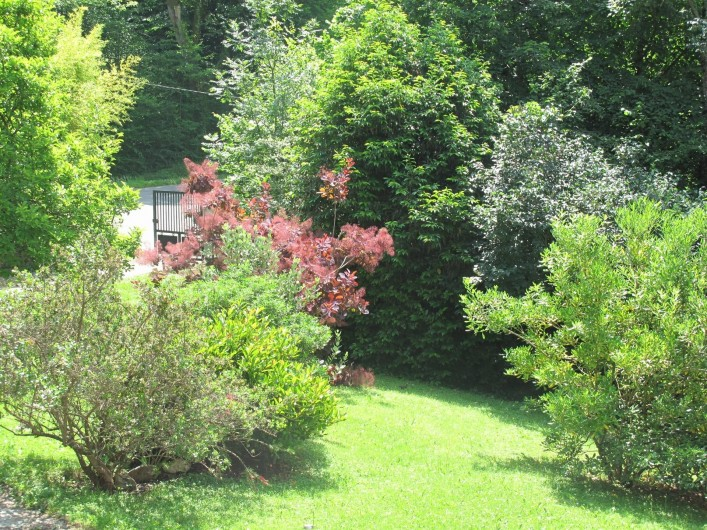 Location de vacances - Studio à Bagnères-de-Bigorre - Jardin