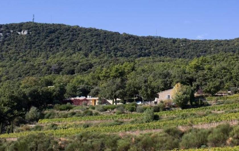 Location de vacances - Maison - Villa à Suzette