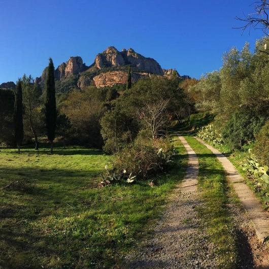 """Location de vacances - Villa à Roquebrune-sur-Argens - Route d'accès au""""Bastidon"""""""