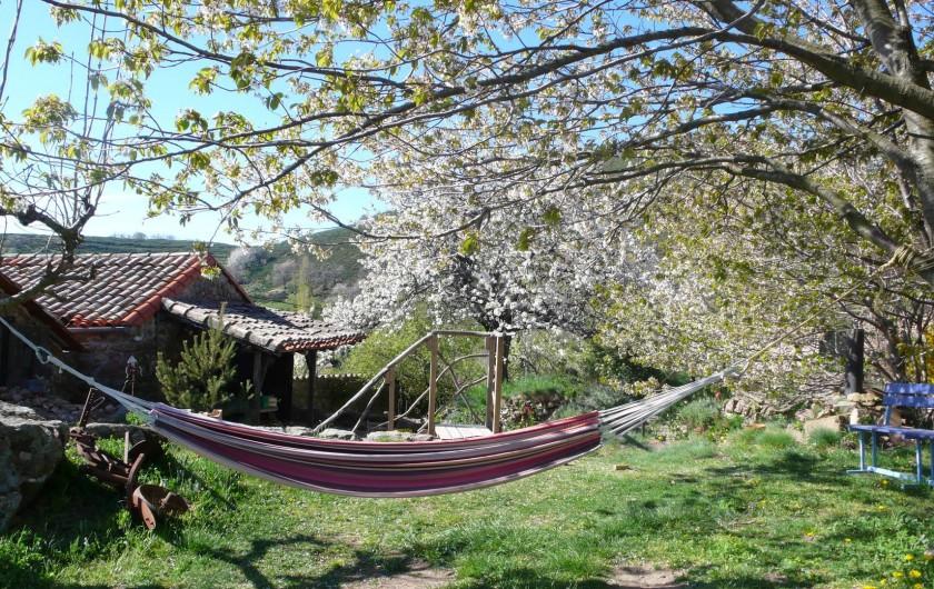Location de vacances - Camping à Saint-Julien-du-Gua - Le hamac tout prêt pour la sieste sous les cerisiers sauvages