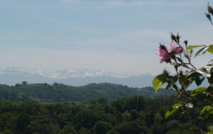 Location de vacances - Gîte à Lucq-de-Béarn - Chaine des Pyrénées