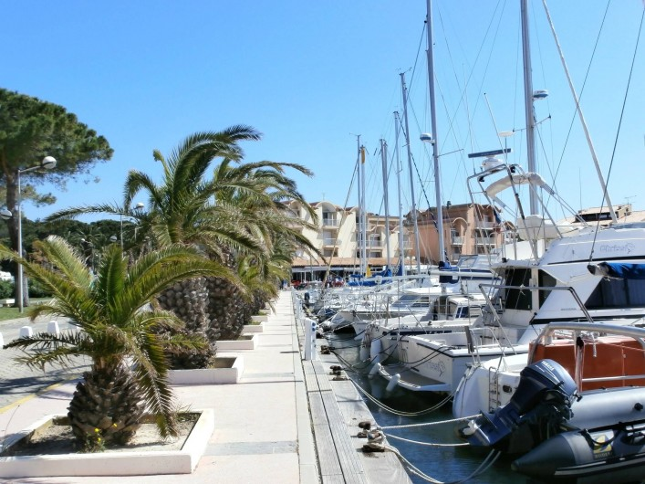 Location de vacances - Studio à Gruissan - quai des palmiers