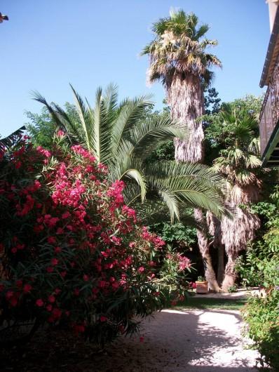 Location de vacances - Chambre d'hôtes à Fabrègues - Un jardin intérieur à la végétation luxuriante.