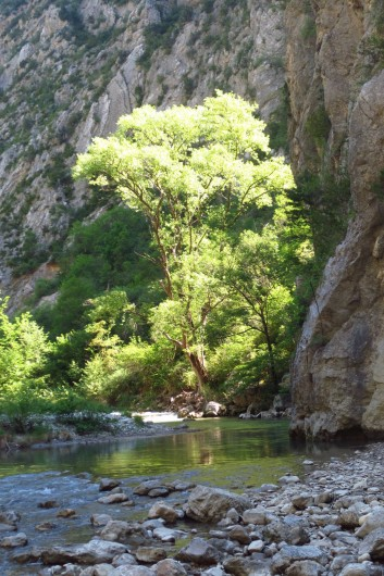 Location de vacances - Villa à Nyons - randonnée pas des Ondes